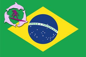 Brazilian Flag with Surfer Girls Logo