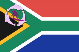 South African Flag & Surfer Girls Logo